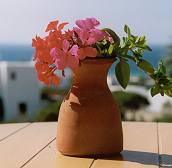 Kavos hotel in Naxos Island - Apartments, Villas, Suites